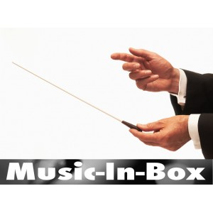 Découverte des instruments de musique et des voix en classe de musique
